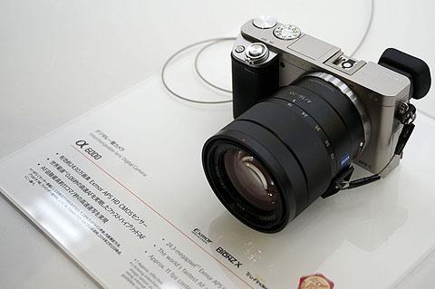 DSC00059.jpg